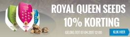 Actie Royal Queen Seeds